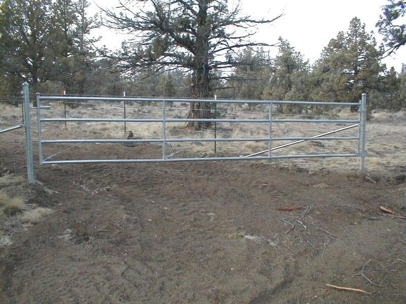 Custom Gate 22 -  Pipe Rail Gate