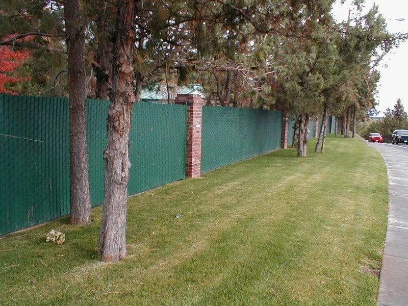 Green Chainlink W/ Brick