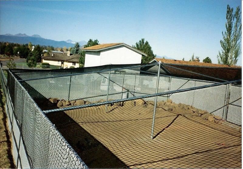 Steel Framed Net Cover Over Slatted Chainlink Kennel
